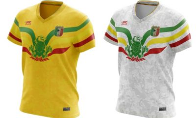 Mali 2019 Africa Cup of Nations Airness Football Kit, Soccer Jersey, Shirt, Maillot AFCON CAN